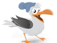 Cartoon Möwe Clipart