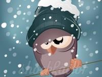 Was für ein Sch… Winter