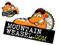 Wiesel Logo