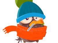Die Vogelgrippe geht um