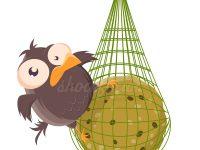 Vogel mit Meisenknödel