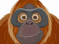 Orang Utan Cartoon Illustration