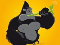 Gorilla mit Bambus