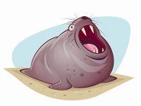 Seelöwe Cartoon